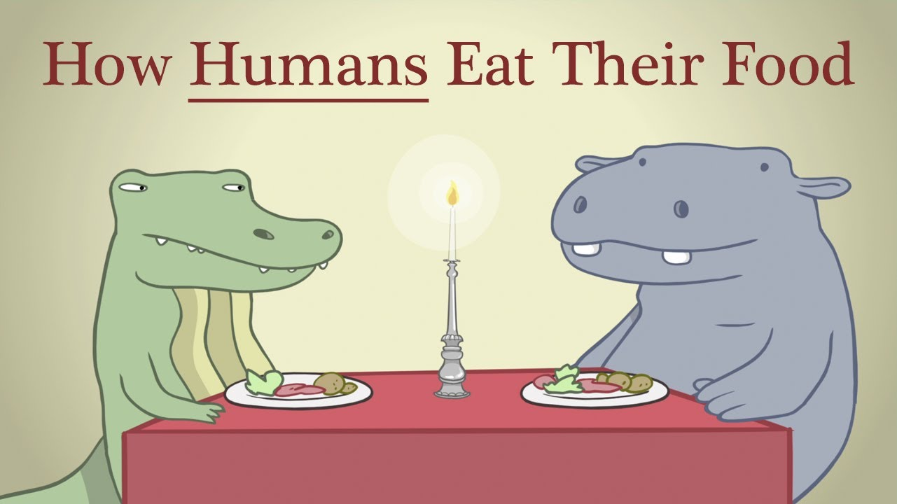 Hippo & Croc: How Humans Eat Their Food