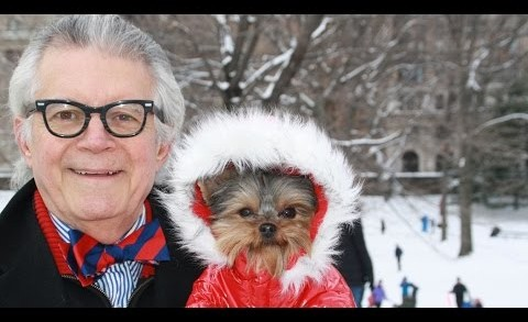 Blizzard Of 2015 NYC Weather With Schmitty The Weather Dog for Westminster