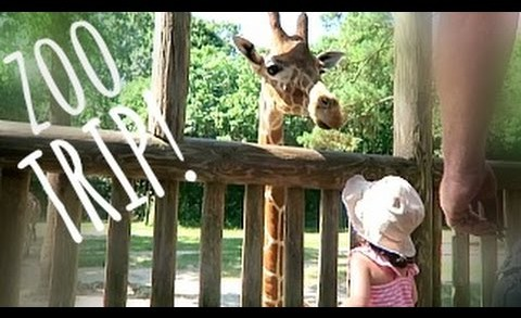 FATHERS DAY ZOO TRIP!