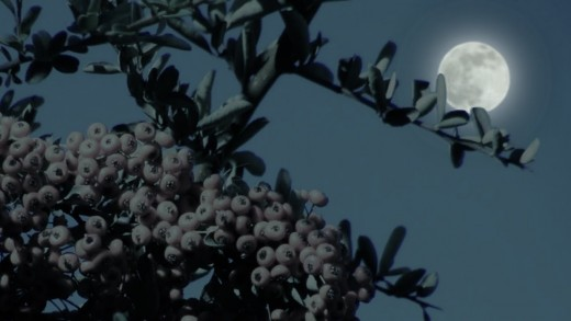 June's Full Strawberry Moon