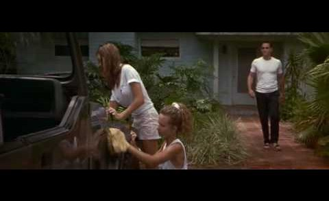 Sexcrimes car wash Denise Richards Wet T-shirt Wild Things