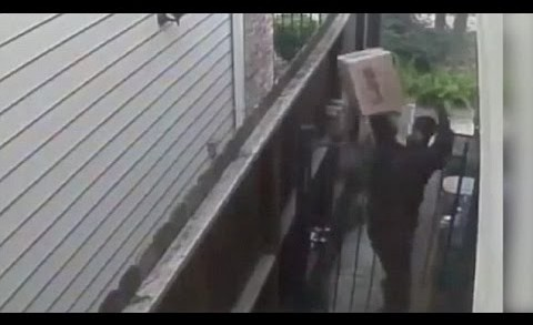UPS Driver Throws Package Over Gate Then Urinates On House