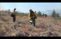 Wenatchee Complex Fire 2012