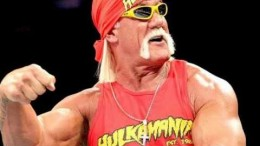 Hulk Hogan Racist Rant Audio (Full Video ) Removed from WWE website