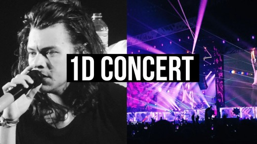 ONE DIRECTION CONCERT IN TORONTO #OTRA | LaurDIY