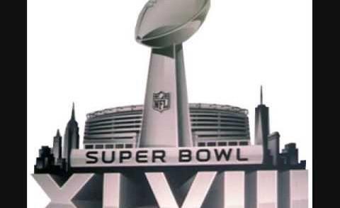 2013-14 NFL Standings Predictions