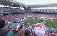 Miami Dolphins Stadium Animation